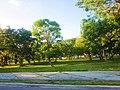 Area verde en el Boluevard Bahía, Chet. - panoramio.jpg