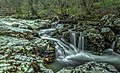 Aria Beck IMG 1115 - panoramio.jpg