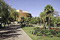 Arizona State University Campus, Tempe, Arizona - panoramio (99).jpg