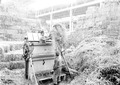Armeestrohlager Maschinenhalle Landesausstellung - CH-BAR - 3238117.tif