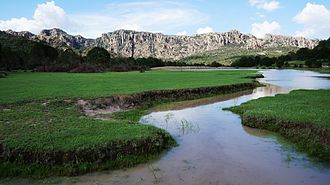 Zacatecas - Stream in the Sierra de Cardos, part of the Sierra Madre Occidental.
