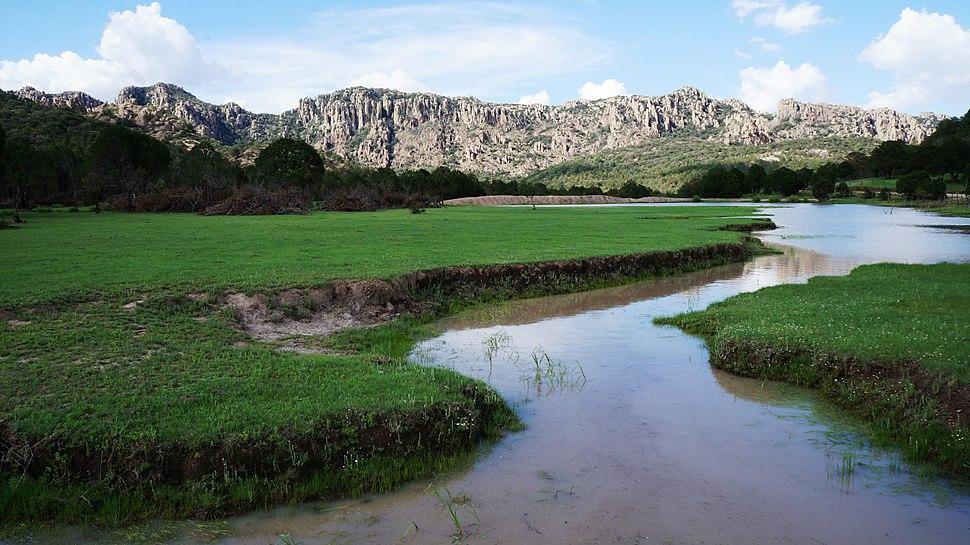 Arroyo en Sierra de Cardos