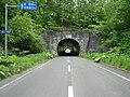 Asahi tunnel.JPG