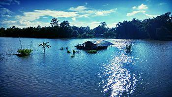 Assam flood in 2015.jpg