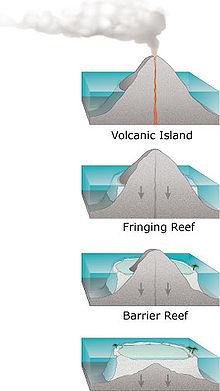 four stages in development of coral reefs: a volcanic island forms, is surrounded by a fringing coral reef, as it subsides slowly a wide barrier reef forms, then after it has sunk below sea level the coral continues to grow forming a circular atoll.
