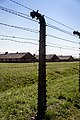 Auschwitz - panoramio (47).jpg