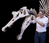 archaeodontosaurus
