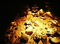 Aztec Templo Major Sacrificial Vault (9792492265).jpg
