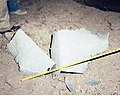 BACK BURNER-POST SHOT, NEVADA TEST SITE - DPLA - 9b6866127901454d041f9a710c3f6e6c.jpg