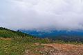 Babia Góra – na Przełęczy Brona.jpg