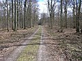 Barnbruch 04.04.2010 - panoramio - Christian-1983 (2).jpg