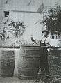 Barrique béarnaise de 300 litres et son tonnelier au domaine Luc à Saint Faust.jpg