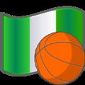 Basketball Nigeria.png