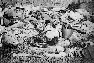 Paraguayan War casualties - Image: Bate & Co 1866