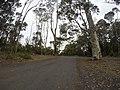 Batehaven NSW 2536, Australia - panoramio (16).jpg