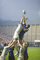 Bath Montpellier Rugby.jpg