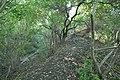 Battle of Rhode Island Butts Hill Site.jpg