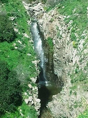 Bazelet River - Bazelet Waterfall, Gamla Reserve.