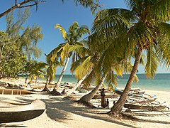Beach in Madagascar with pirogues and palm trees.jpg