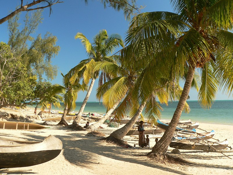 Beach in Madagascar with pirogues and palm trees