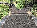 Bed Bug Infestation.jpg
