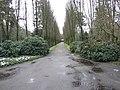 Begraafplaats Ermelo (30331718293).jpg