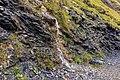 Bergtocht van Tschiertschen (1350 meter) via Ruchtobel richting Ochsenalp 11.jpg