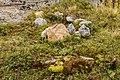 Bergweg van Burleun, naar Ladinas, Andiast. (actm) 13.jpg