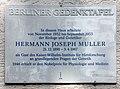 Berliner Gedenktafel Robert-Rössle-Str 10 (Buch) Hermann Joseph Muller.jpg