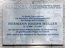Hermann Joseph Muller -  Bild