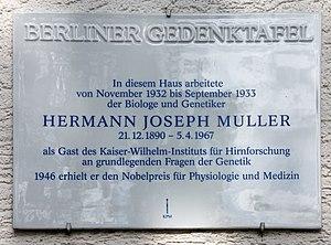 Berliner Gedenktafel