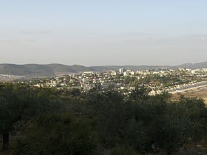 Beit Shemesh - View of modern Beit Shemesh from the south