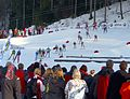Biathlon WCH 2012 Mixed Relay first lag 1.jpg