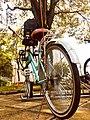 Bicicleta estacionada.jpg