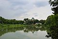Bidisha Lake - Bengal Engineering and Science University - Sibpur - Howrah 2013-06-06 8579.JPG