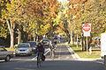 Bikes Fall Cars (15548015027).jpg