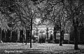 Biografipalatsi Capitol lumisten puiden takana - N102620 - hkm.HKMS000005-km0037it.jpg