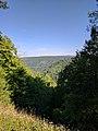 Blackwater Falls State Park WV 09.jpg