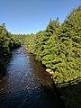 Blackwater Falls State Park WV 24.jpg