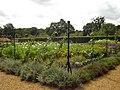 Blickling Walled Garden7.jpg