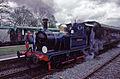 Bluebell on the Bluebell railway.jpg