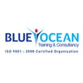 Blueocean management training.png