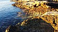 Blurred Transition (200062637).jpeg
