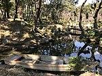 Boat and Senshinkyo Bridge in Shukkei Garden.jpg