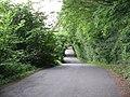 Bodenham Lane At Dinmore Hill - geograph.org.uk - 1365593.jpg