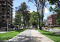 Bogotá ciclorruta de la calle 92 en el Chicó.JPG