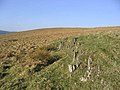 Border Hill Country - geograph.org.uk - 394055.jpg