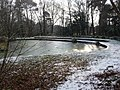 Bournemouth, frozen-over pond in Horseshoe Common - geograph.org.uk - 1145627.jpg