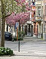 Brüssel, Belgien 08.jpg