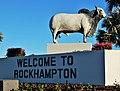 Brahman Bull Yeppen Roundabout Rocky.jpg